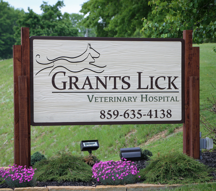 Grants lick veternairian hospital