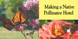 Making a native pollinator hotel banner art