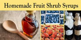 Fruit shrubs banner for web