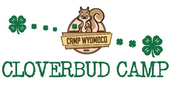 cloverbud camp