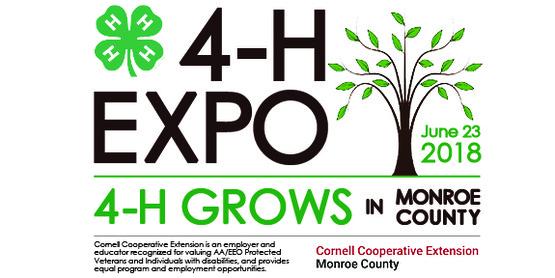 Expo logo 3 (small for web)