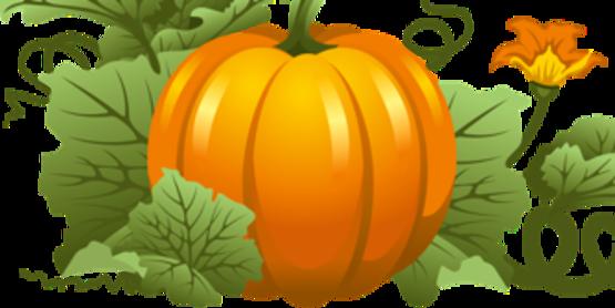 Pumpkin decor png clipart