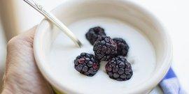 Yogurt 3018152  340
