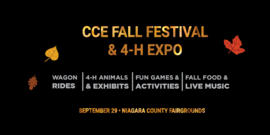 Website event cce fall festival 2018