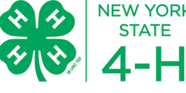 Ny state 4 h