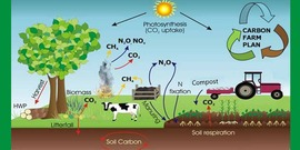 Carbon farming850x425