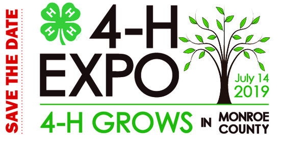 2019 EXPO banner