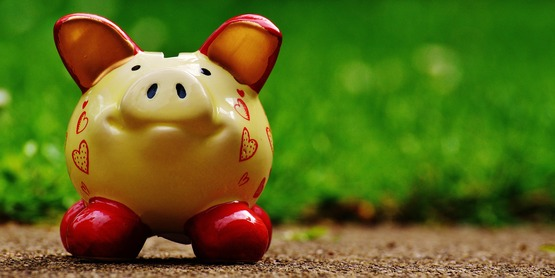 a ceramic piggy bank against a blurred grassy background