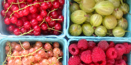 baskets of berries at the DeWitt Farmers' Market, Ithaca NY