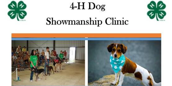 4-H Dog Showmanship Clinic