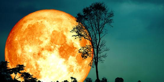 A glowing moon at night