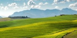Rented land is vital to the viability and profitability of farms.