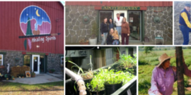 healing spirit farm tour