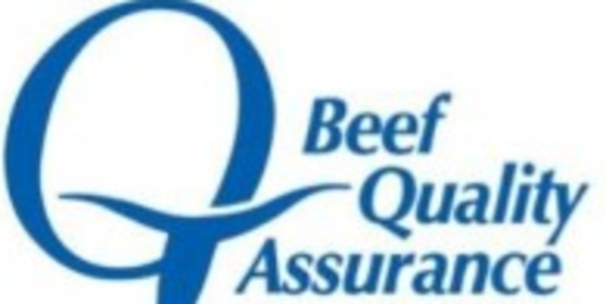 Beef Quality Assurance Transportation Training - Pavilion, NY