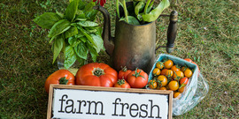 Farm-to-Table Image from Irish Hill Farm