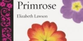 Primrose book cover Elizabeth Lawson