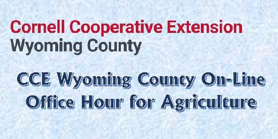 CCE Wyoming County On-Line Office Hour for Agriculture