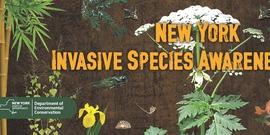 Invasive Species banner
