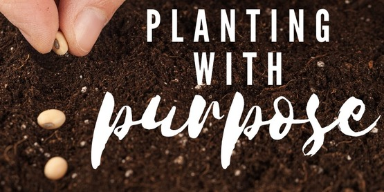 Planting with Purpose