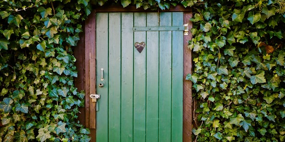 Green door surrounded by ivy.