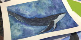 whale watercolor south fork education event