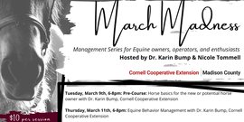 March Madness Equine Management Series ad