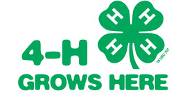 4-H Grows here web image