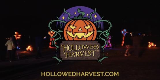 Hollow Harvest