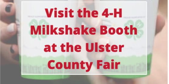 Visit the 4-H Milkshake Booth at the Ulster County Fair.