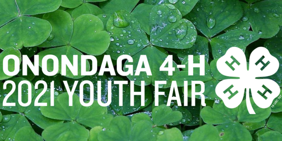 2021 youth fair header