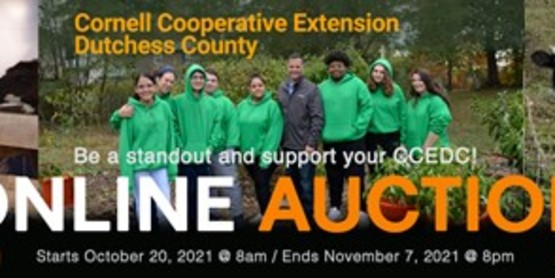 2021 Online Auction is October 20 through November 7