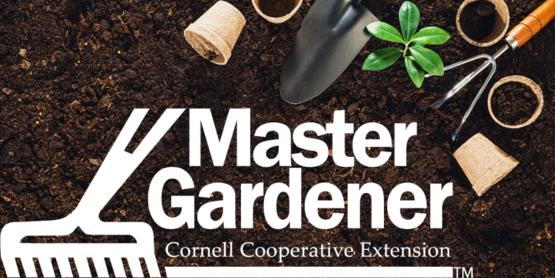 master gardener volunteer program