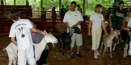 Youth participants show their goats at 4-H Kritter Kamp 2007