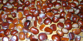 Chestnuts counter