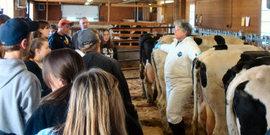 Teaching Dairy