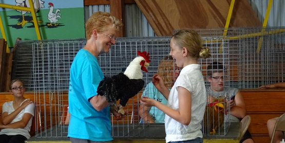 Poultry showmanship 2015 fair