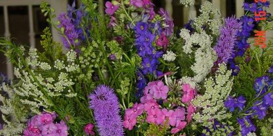 Floral arrangements 167edit full