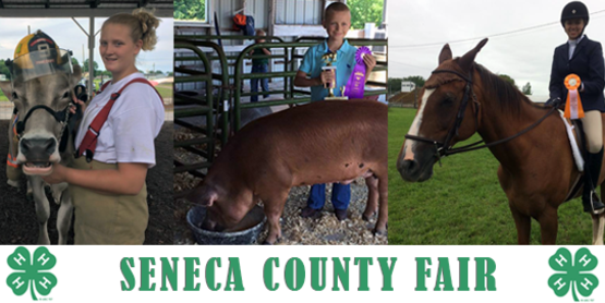 Seneca county fair 2016