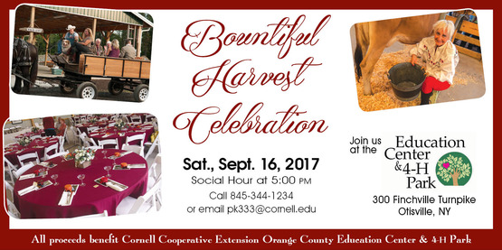 Bountiful harvest 2017 web ad