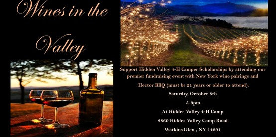Wine in the valley8