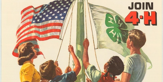 4-H poster (old)