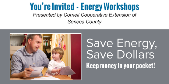 Energy workshop seneca falls library thursday october 6 2016