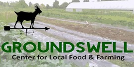 Groundswell banner850x425