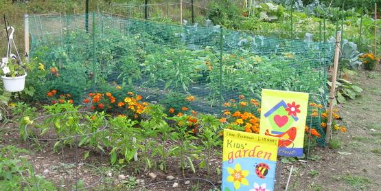 Lp community garden 023