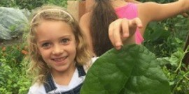 young girl at the Children's Gardening holding up a large leaf.
