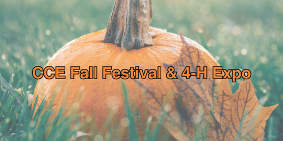 Website event cce fall festival