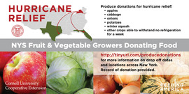 Hurrican relief nys fruit and vegetable donations 1200x628
