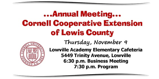 Cce lewis county annual meeting banner1