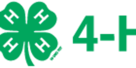Logo 4h grows here