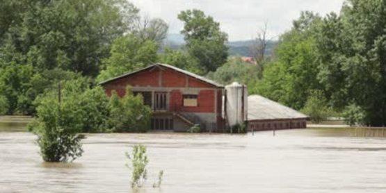 Farm disaster 2